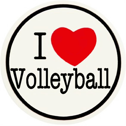 volleyball_gifts_I_Heart_Volleyball_Sticker_detail2